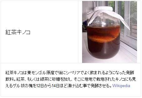 kombucha(紅茶キノコ)
