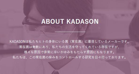 カダソン_概要